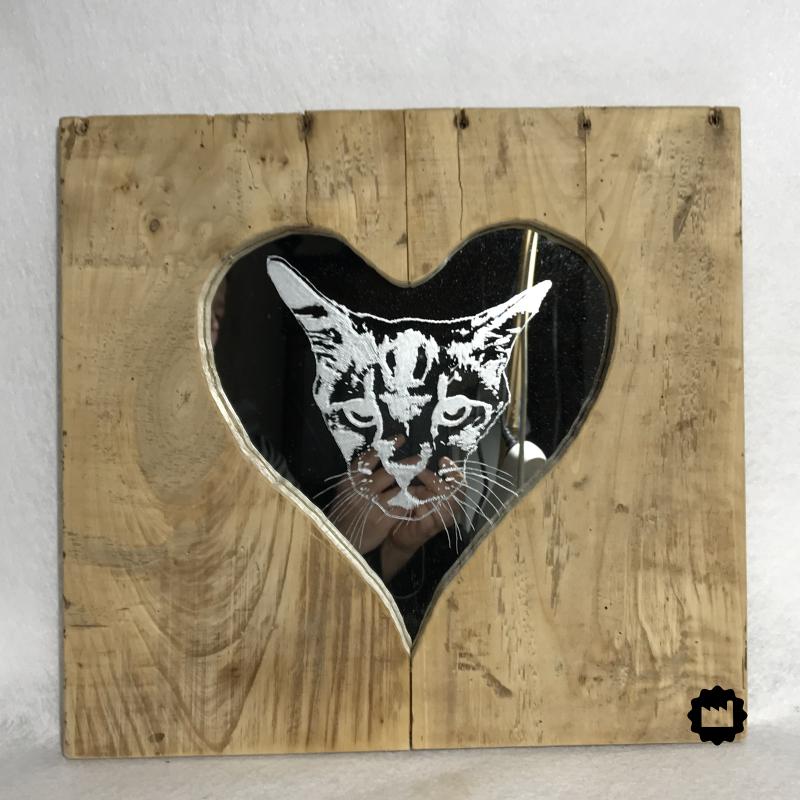 Cadre gravure chat sur miroir